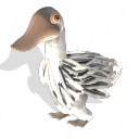 Pato.png